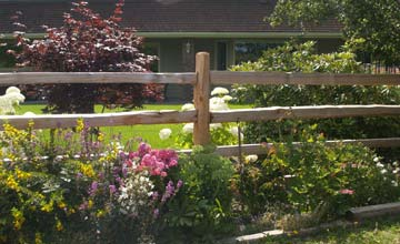 Privacy Fence Vancouver